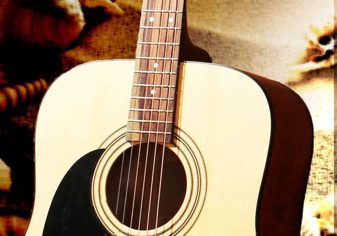 For novice amateur guitarists