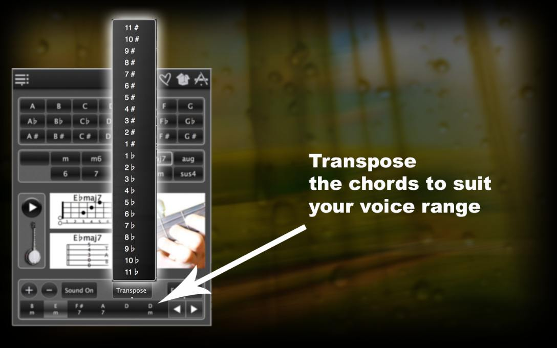 120 Banjo Chords – Learn How To Find The Chords With Photos