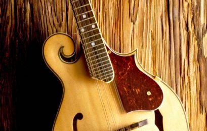 """APP """"120 Mandolin Chords"""""""